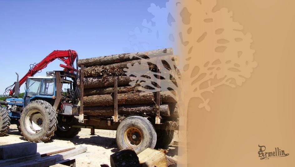 Séchage naturel du bois