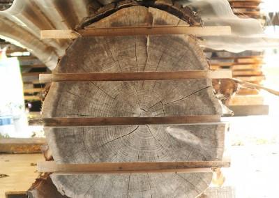 Bille de bois coupée